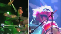 Travis Barker vs. Animal -- The Muppetastic DRUM WAR [VIDEO]
