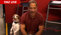 TMZ Live -- 'The Artist' Dog Uggie -- Fetch Me an Oscars Invite!