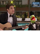 """Glee's"" Darren Criss Duets with Kermit the Frog!"