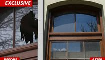 Russell Brand -- Smashed Window REPAIRED ... for $240