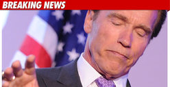 Arnold Schwarzenegger Puts Acting Career On Ice