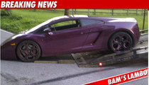 Bam Margera: My Lambo Was POISONED!