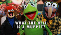 Jason Segel -- The Great Muppet Mix-Up