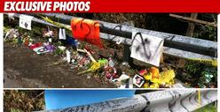 Ryan Dunn&#039;s Crash Site VANDALIZED -- &#039;Ritch Pr*ck&#039;