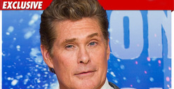 Hasselhoff, GF Go Nuclear -- Security Called