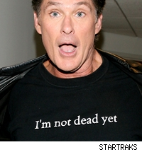 David Hasselhoff wears a t-shirt that says