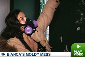 Bianca Jagger tours her moldy apartment