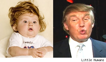 The Baby Don / Donald Trump