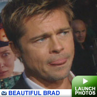 Brad Pitt gallery: Click to launch photos