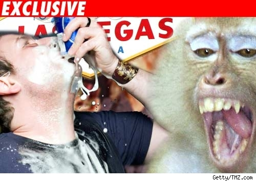 Monkey and a guy drinking a beer