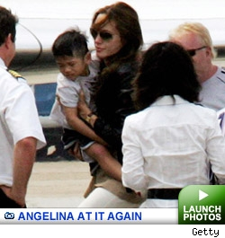 Angelina Adopts Pax: Launch gallery