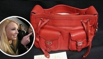 Britney's Old Bag