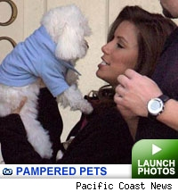 Pampered Pets -- click to launch