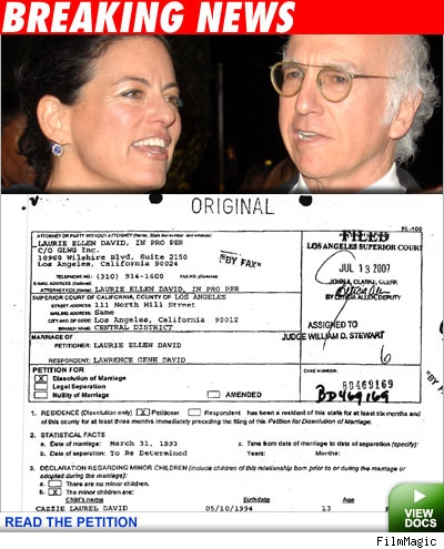 Laurie David, Larry David