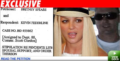 Britney court docs