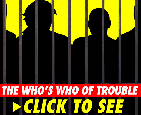 Arresting Celebs - click to launch