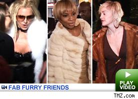 fur frenzy -- click to play