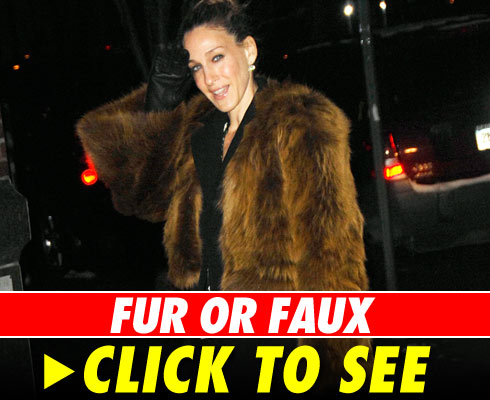Fur or Faux - click to launch