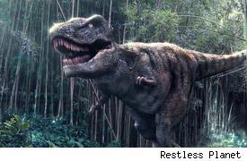 Rob-Dinosaur