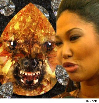 Kimora Lee turning her pet into a diamond?