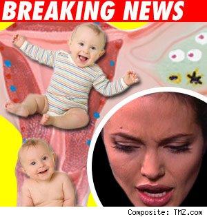Brangelina baby news