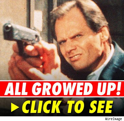 Fred Dryer -- click to launch