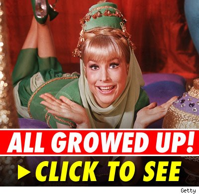 In the '60s, Barbara Eden played the lead role on the TV series