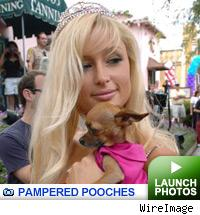 Celeb pets -- click to launch