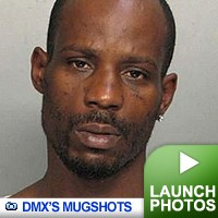 DMX Mugshots: Click to view!