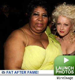 Fat after fame - click to launch