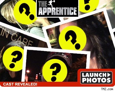 Celeb Apprentice - click to launch