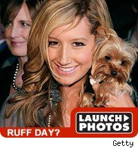 ruff day: launch photos