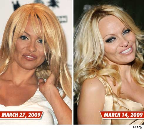 There is officially nothing real about Pamela Anderson .