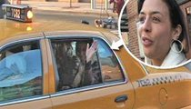 De Niro's Daughter -- Taxi Rider