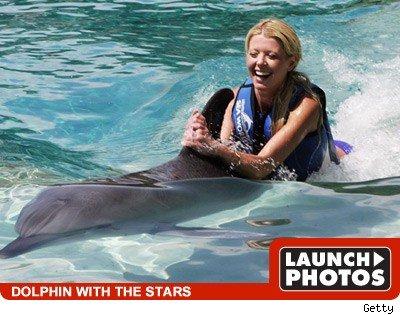 10. Плавание с дельфинами в открытом море (Новая Зеландия)