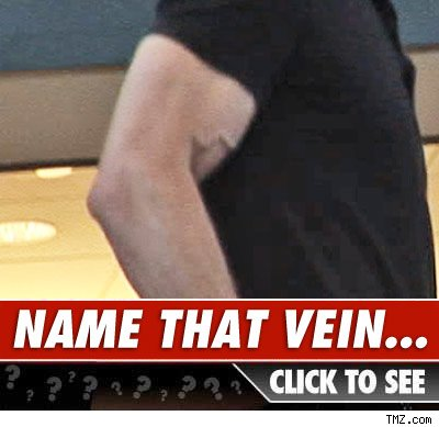 Whose vein: Click to reveal