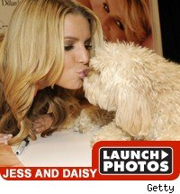 Jessica Simpson And Daisy
