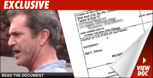 Mel Gibson DUI Document