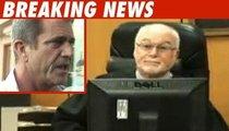Mel Gibson -- Bye-Bye DUI