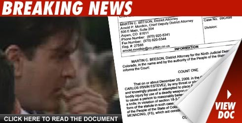 Charlie Sheen charged: Click to view document