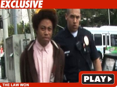 TMZ Camera Bandit Suspect -- Arrested on Tape!