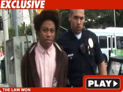 TMZ Camera Bandit Suspect -- Arrested on Tape!