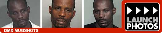 DMX Mugshots