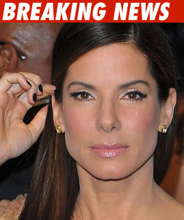 sandra bullock divorce