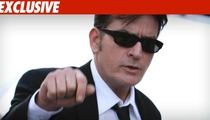 Charlie Sheen Plea Would Involve Jail Time