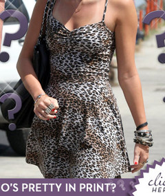 Guess the Leopard Lady!