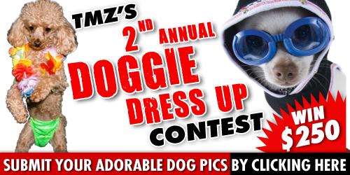 0804_tmz_dog_dressup_2