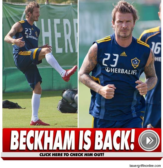 David Beckham Tendon Injury