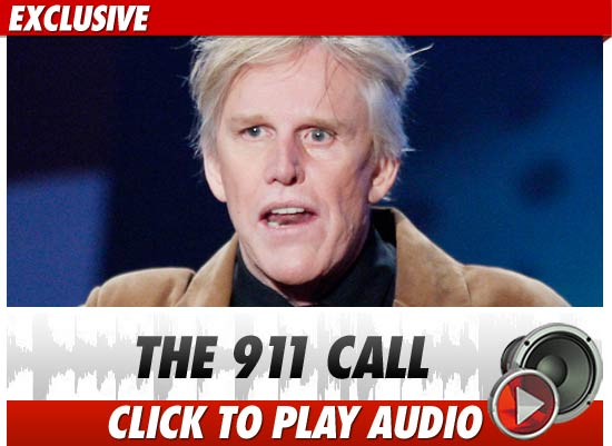 Gary Busey Car Accident