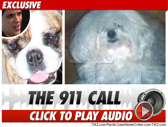 Sam Ronson 911 Call